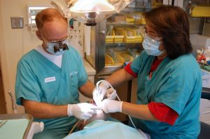 two dentists assisting a patient